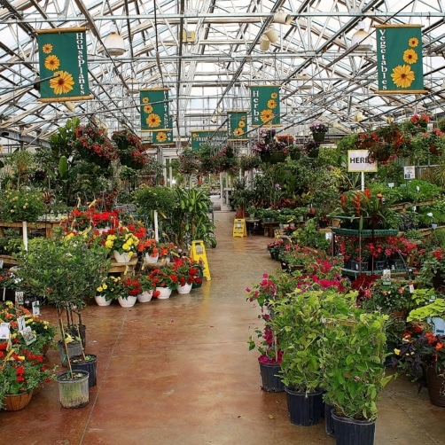 Breezewood Gardens Greenhouse